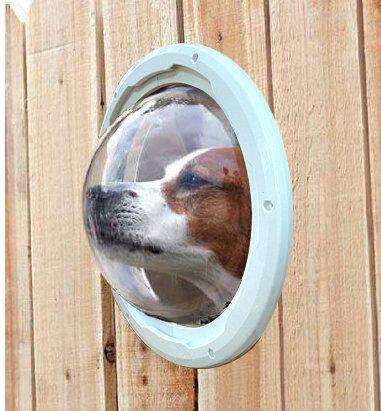 Окно в заборе для собаки